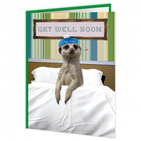 Get Well Soon Meerkat Card