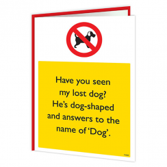 Lost Dog Warning Card