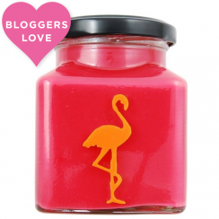 Cranberry, Orange & Cinnamon Explosion Flamingo Candle