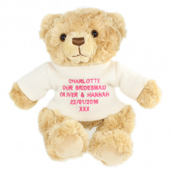 Pink Embroidered Teddy Bear