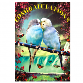 Love Bird's Congratulations Card