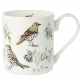 5 Song Thrush Bone China Mug