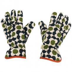 Big Spot Shadow Flower, Potting Gloves