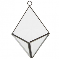 Black Pyramid Wall Mounted Terrarium