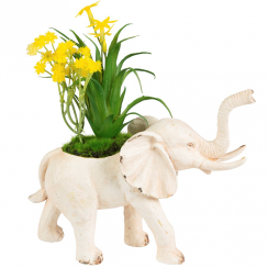 Rustic Cream Elephant Decoration with Flowers