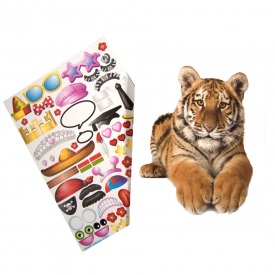 Design your own Card Tiger