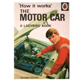 Ladybird Motor Car Card