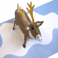 Pop Up Reindeer Card