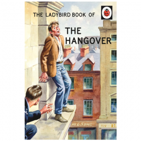The Ladybird Book of The Hangover, for Grown Ups