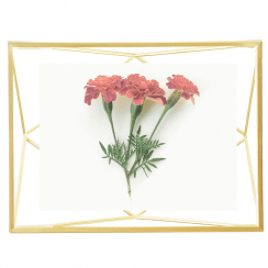 Prisma Photo Frame 4 x 6 Matte Brass