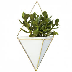 Trigg Large Wall Vessel, White & Brass